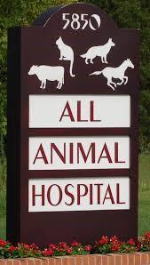 All Animal Hospital