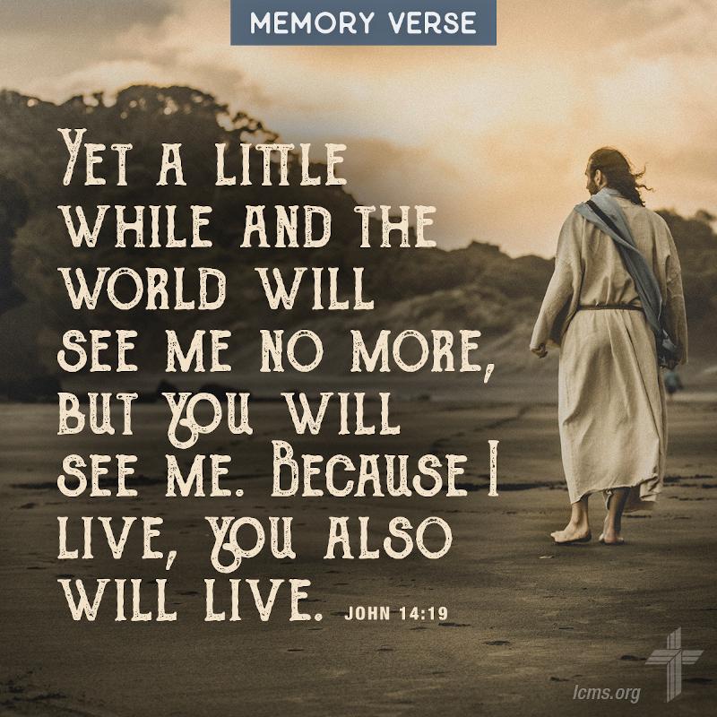 John 14:19
