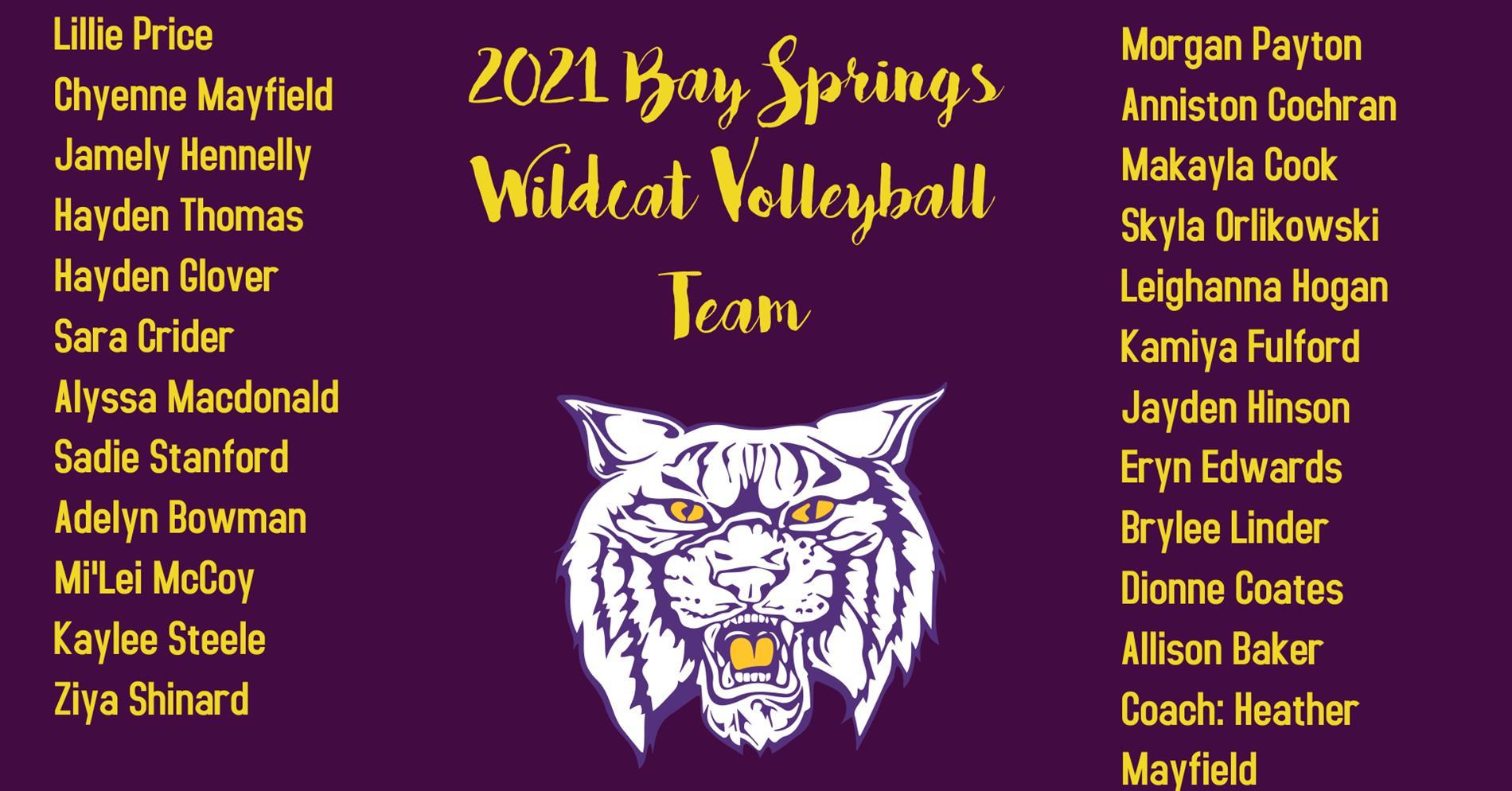 2021 BSMS Wildcat Volleyball Team