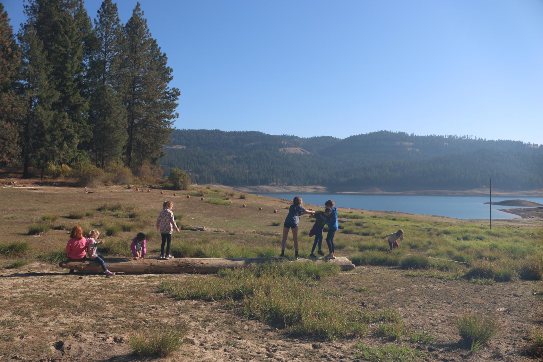 Freem Creek Field Trip