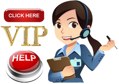 VIP Student Help