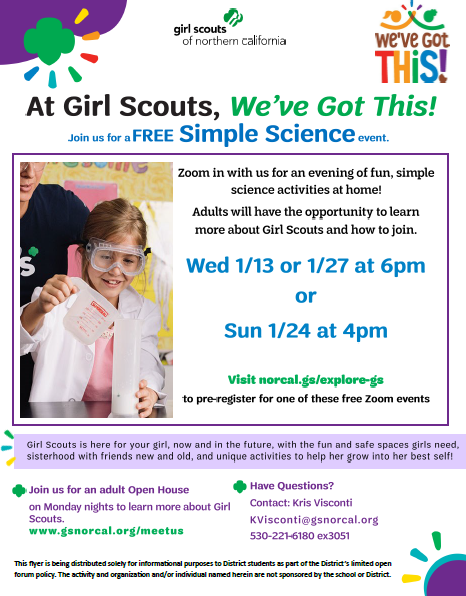 Try Out Girl Scouts