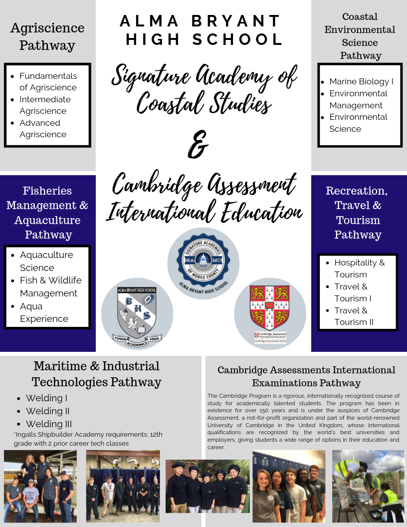 Academies Flyer Page 1