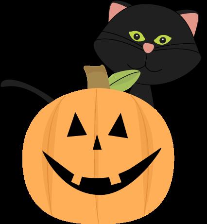 cat behind pumpkin