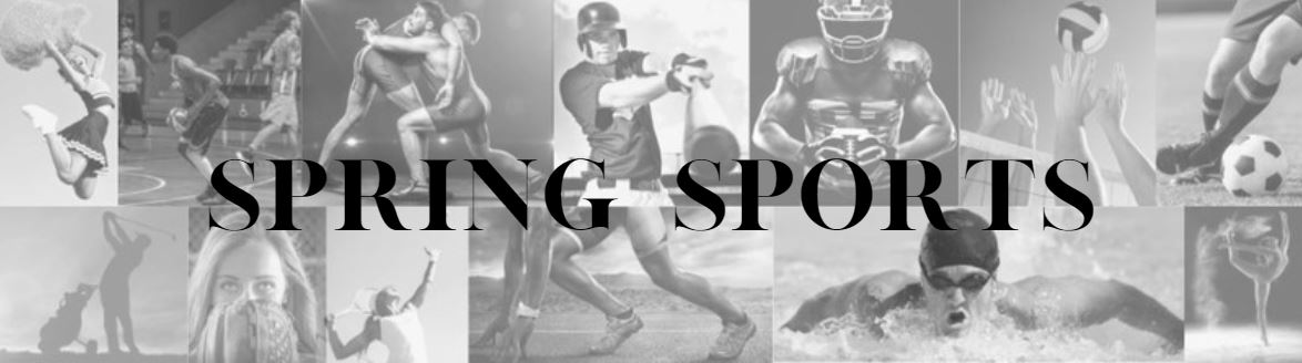 HOCO Spring Sports