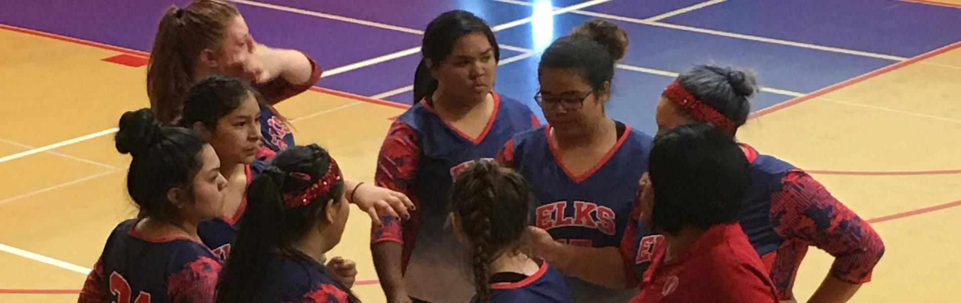 Girls volleyball team 2019