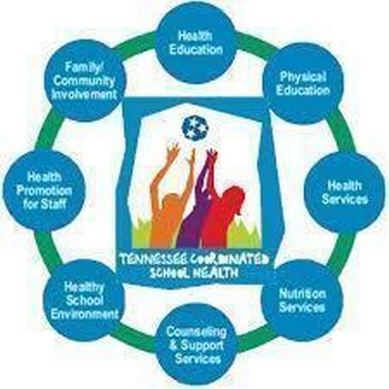 Tennessee Coordinated School Health Infographic