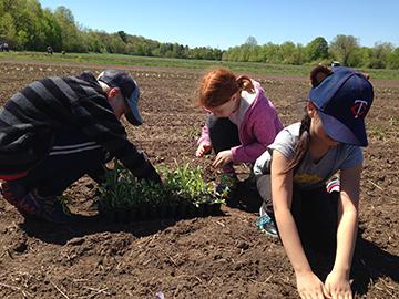 Philadelphia Farm Planting