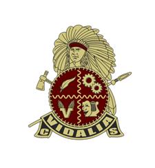 Vidalia City Schools Crest