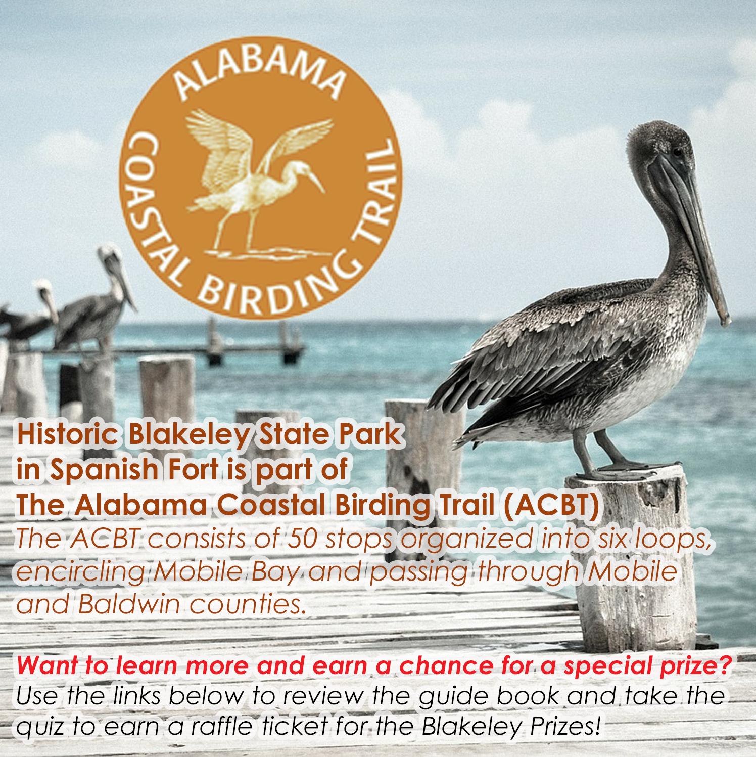 Alabama Coastal Birding Trail Quiz link