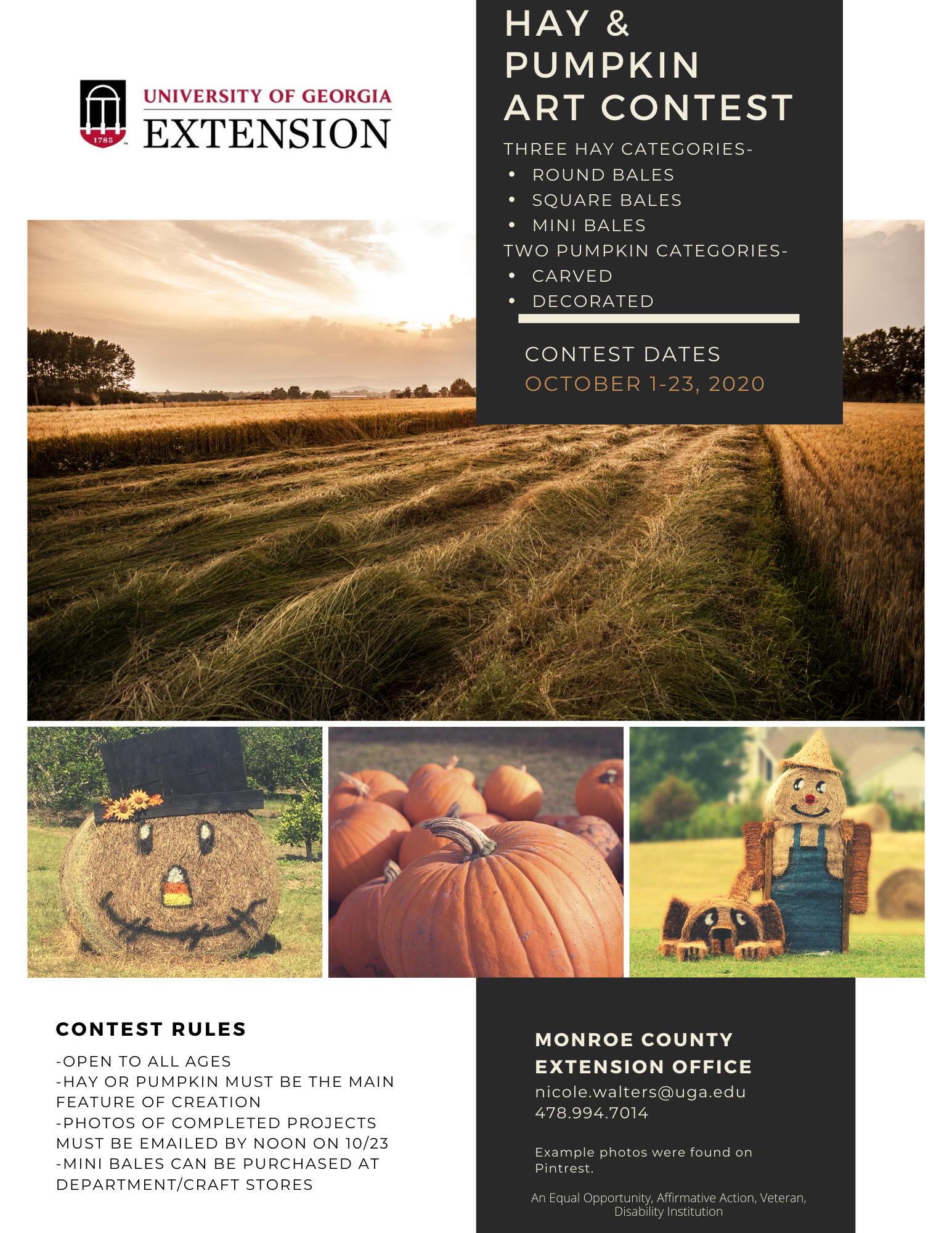Hay and Pumpkin Contest