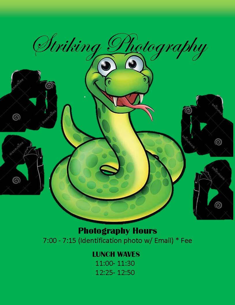 Striking Photography