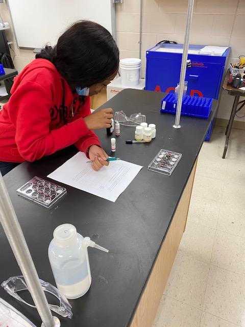 Scientific Reasoning Lab