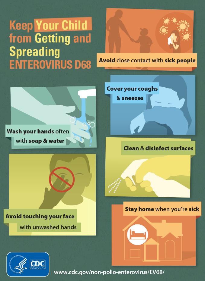 Enterovirus D68 Infographic