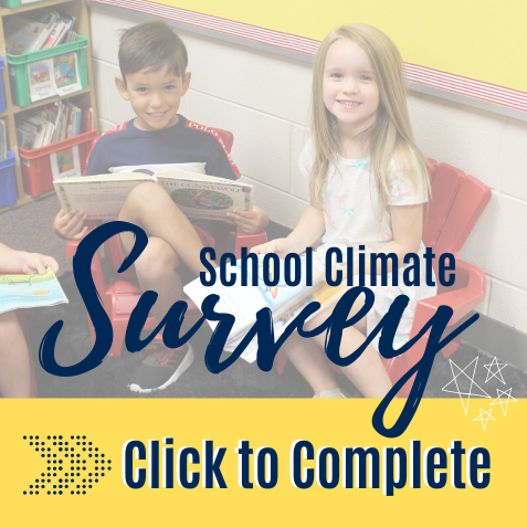 GaDOE School Climate Survey