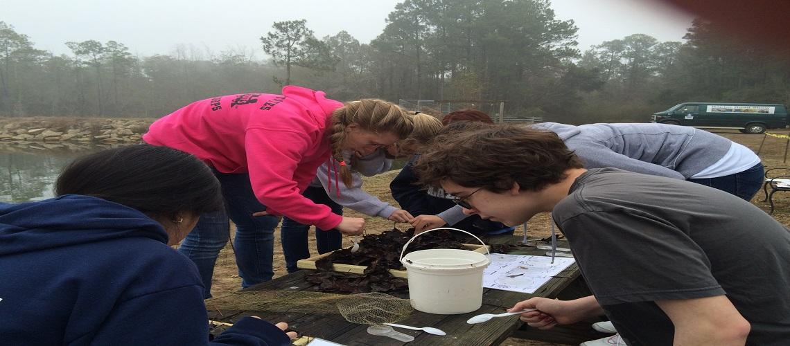 Kids investigating invertebrates at the lake