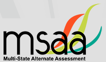 MSAA Assessment