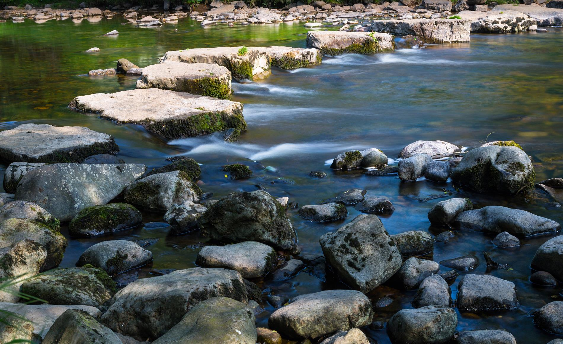 Stepping Stones Stream and Rocks