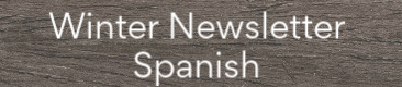 winter newsletter spanish