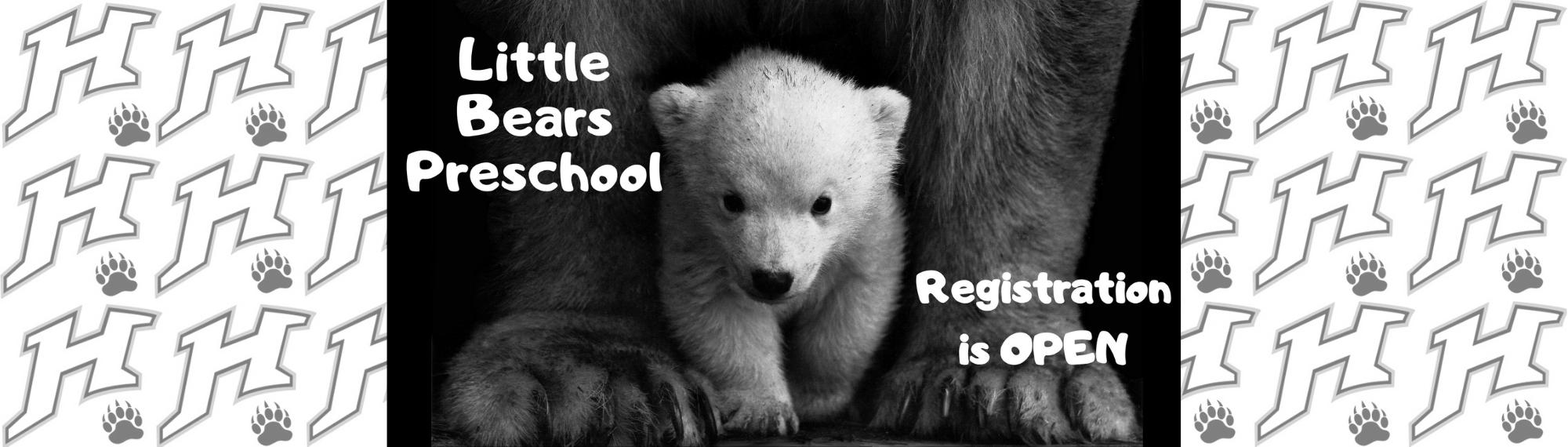 Little Bears Registration Link