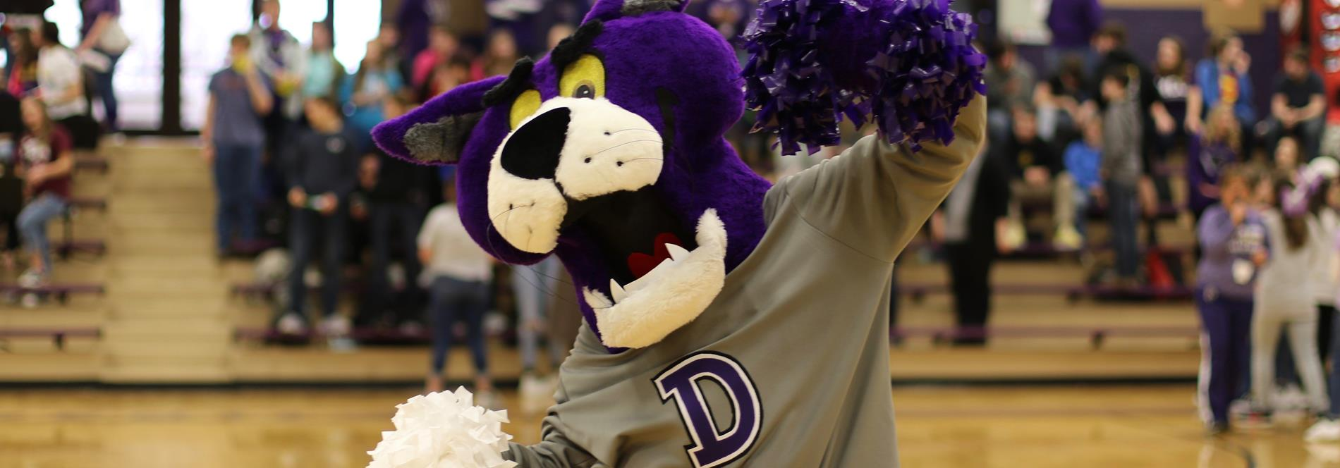DSIS Panther Mascot showing his school spirit