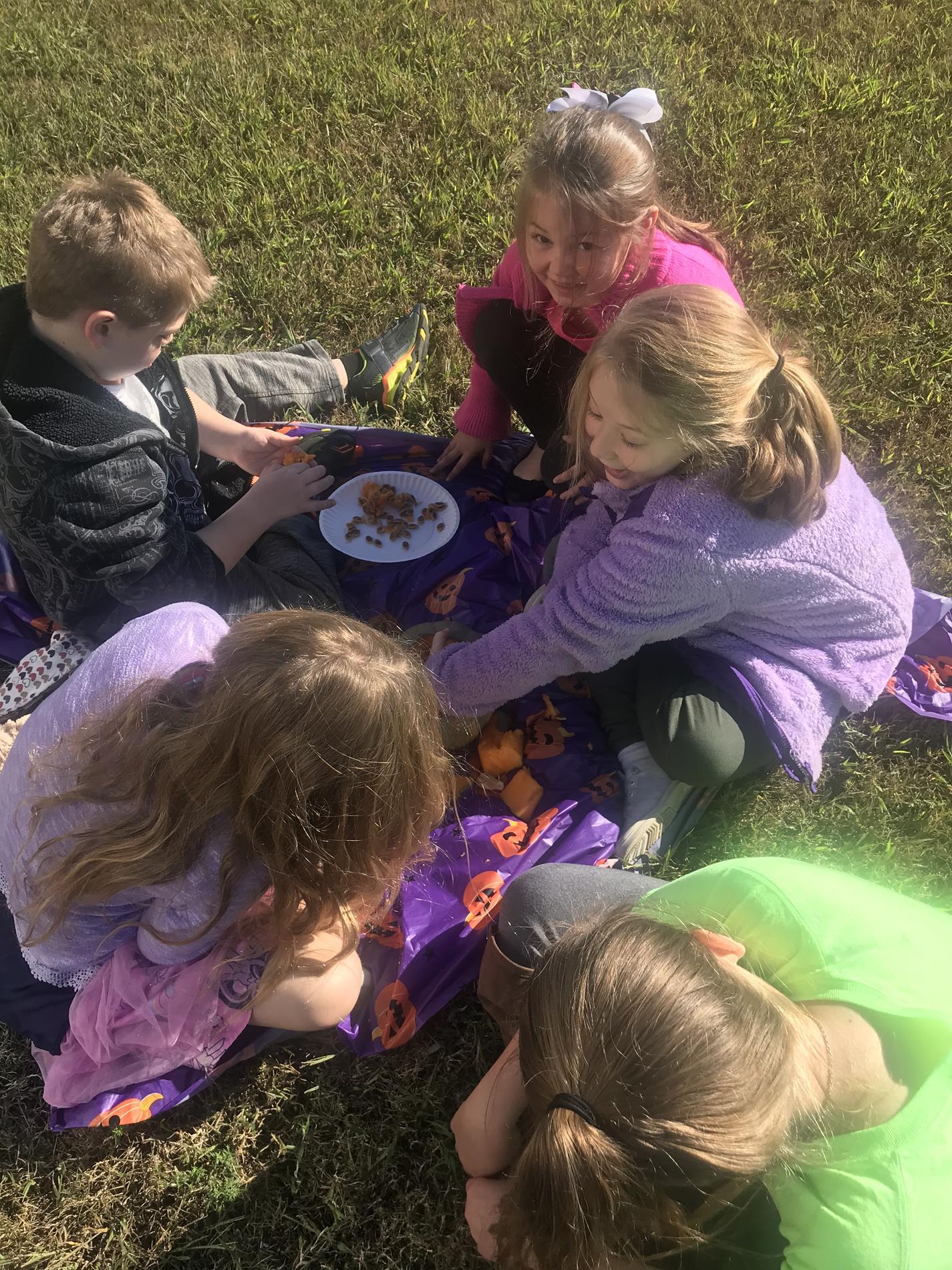 Pumpkin FUN!-Our Math lesson consisted of pumpkin seeds!!