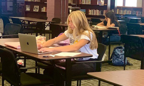 girl working on laptop in library