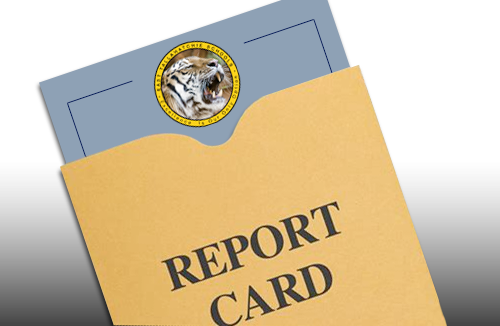Report Cards Delivered