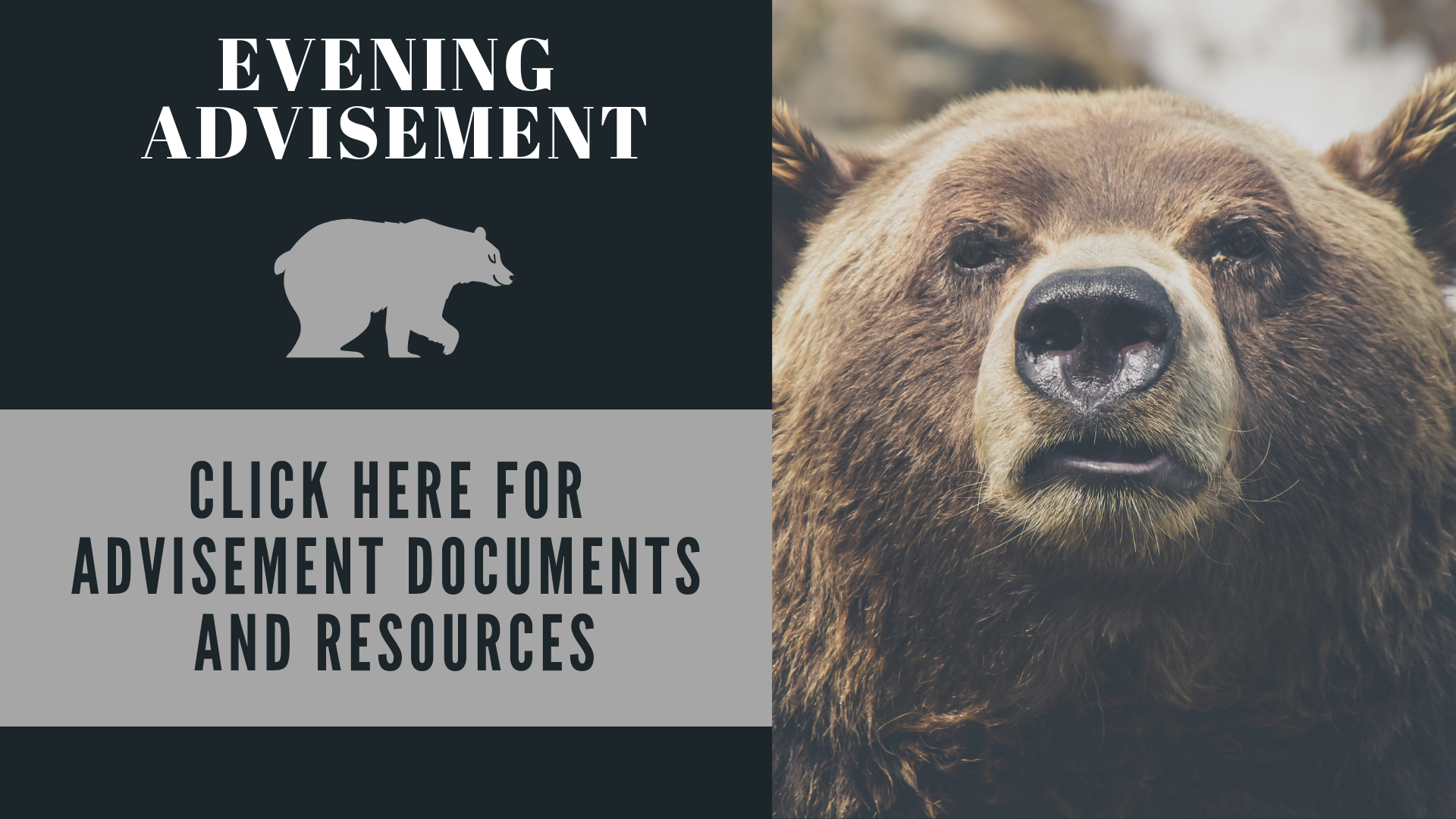 Evening Advisement Documents and Resources Promo and Link