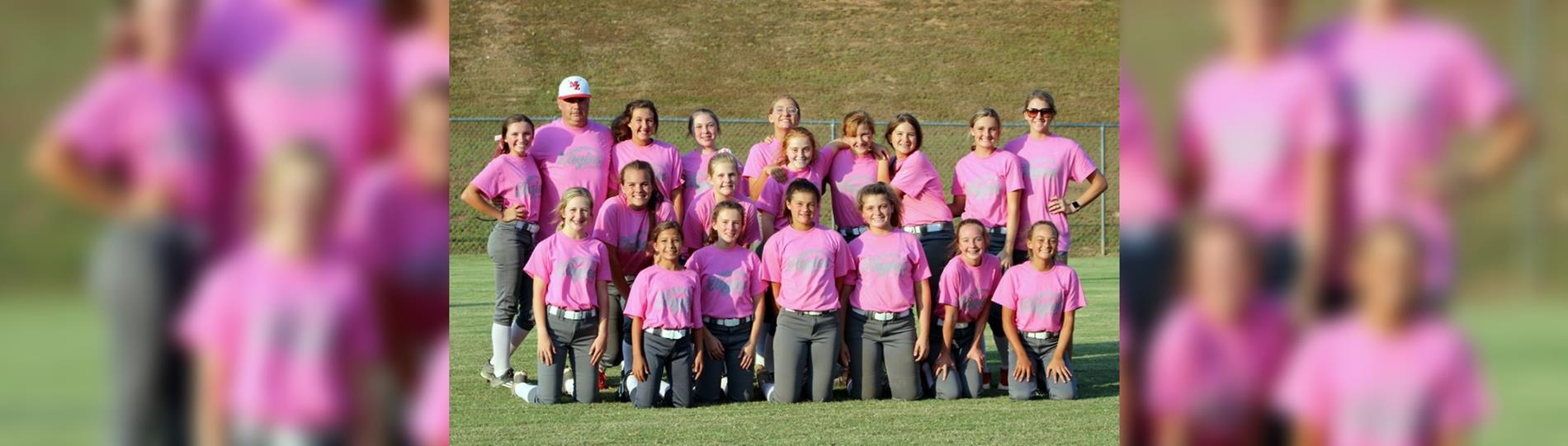 Softball Breast Cancer Game