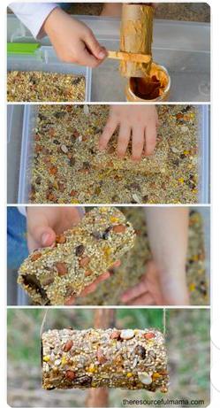 Bird feeder paper towel roll/peanut butter