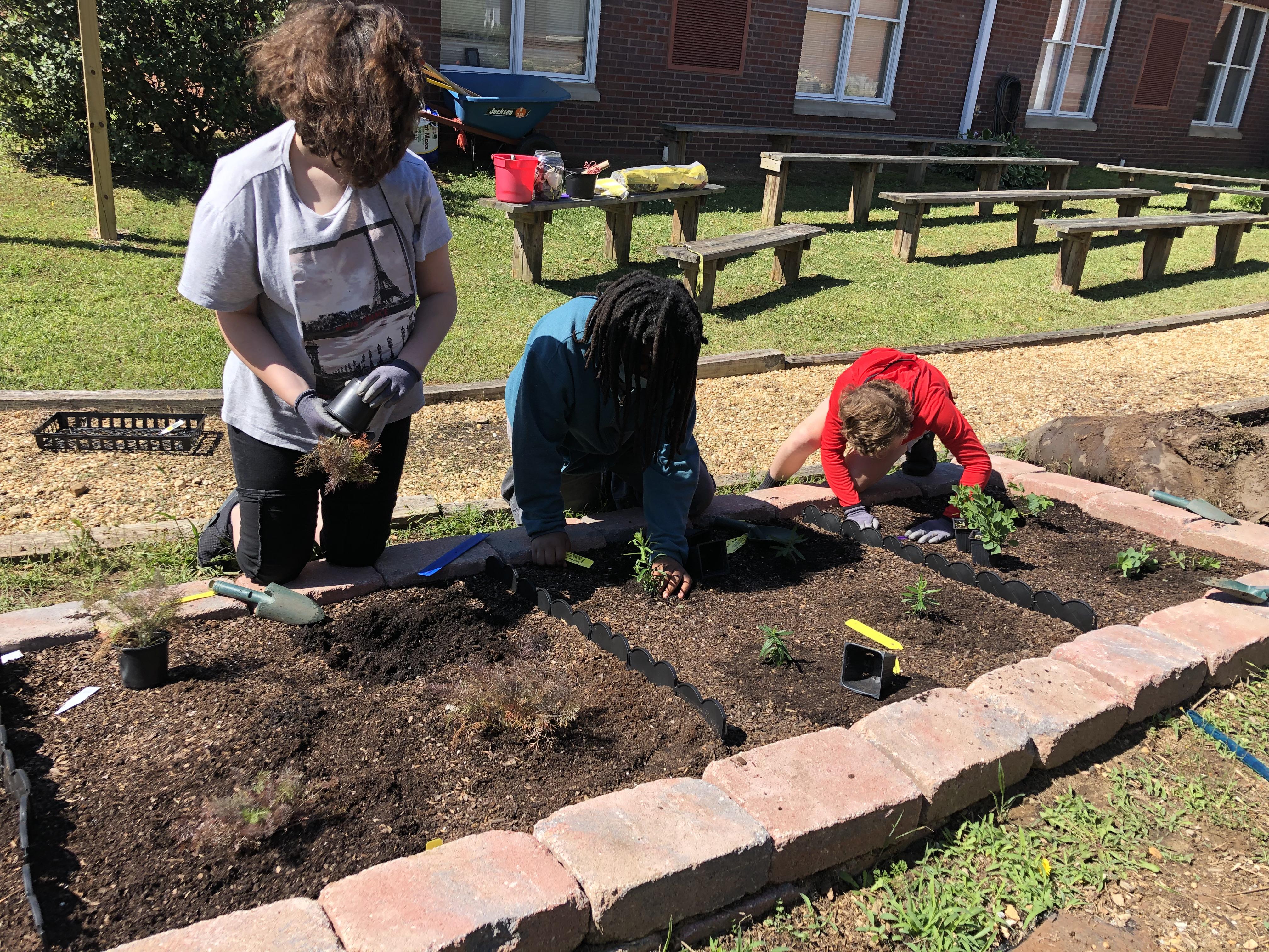 Planting Butterfly Garden