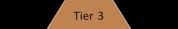Tier 3