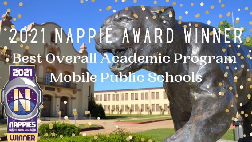 Nappie Award Winner