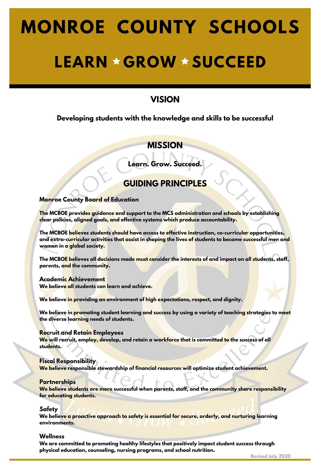 Vision Guiding Principles