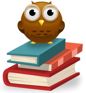 owl border