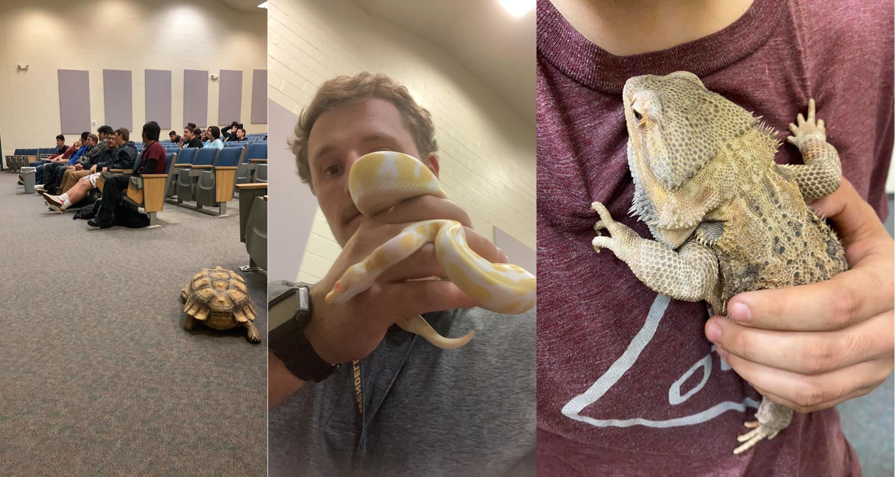 Southern Idaho Reptile Rescue #3
