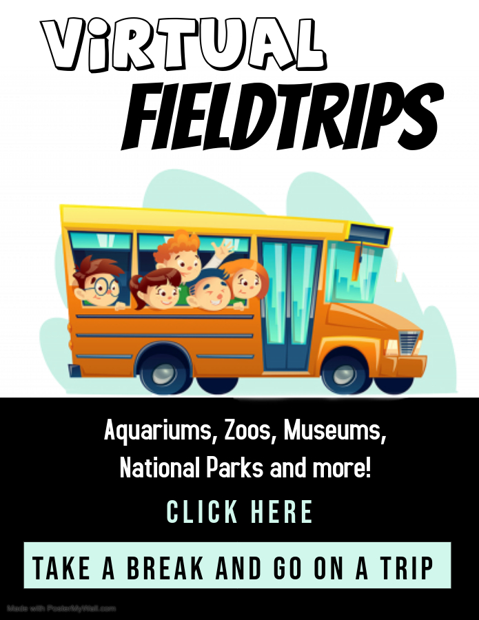 virtual field trip flyer