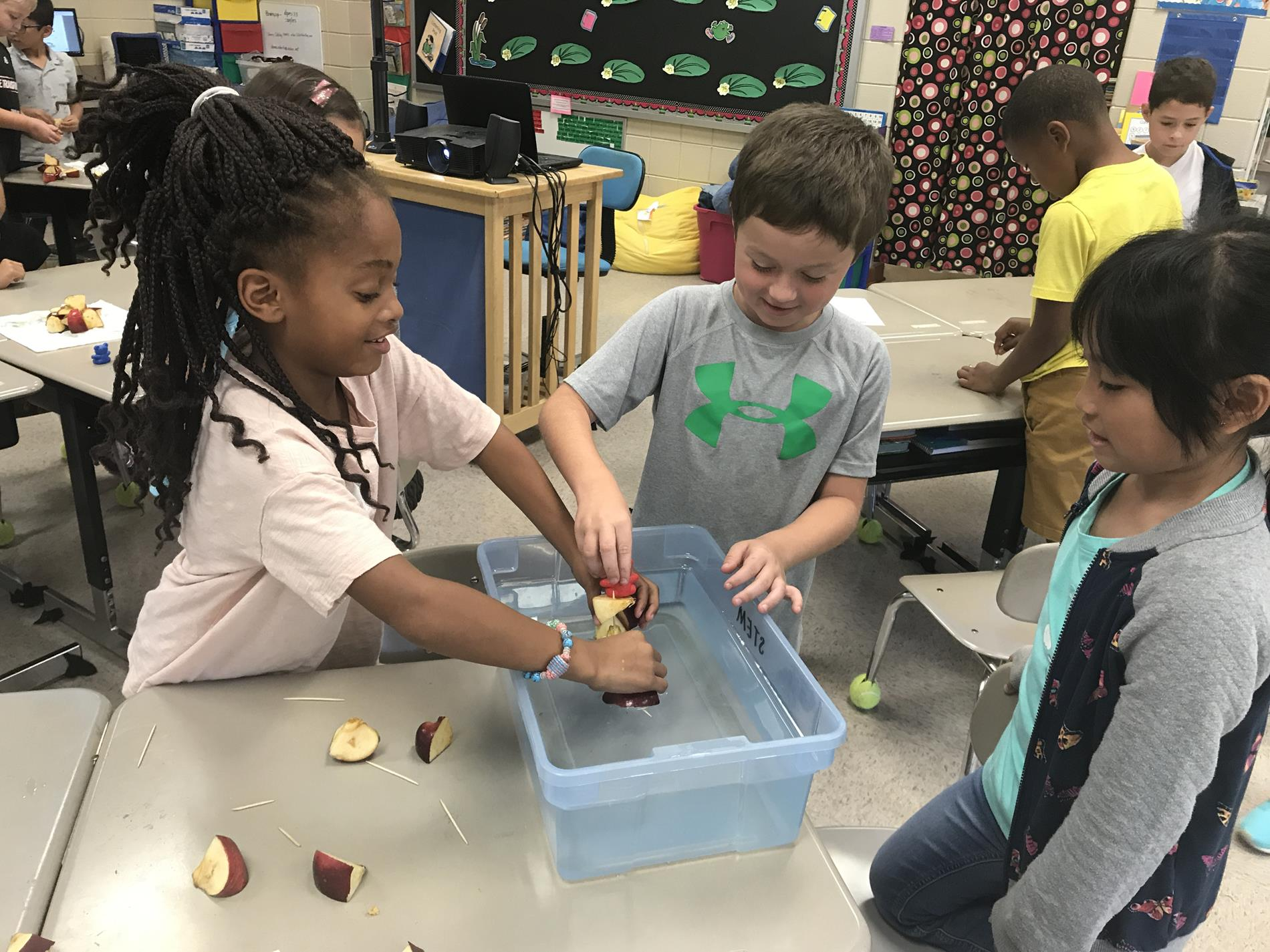 STEM - make a floating raft from apple pieces