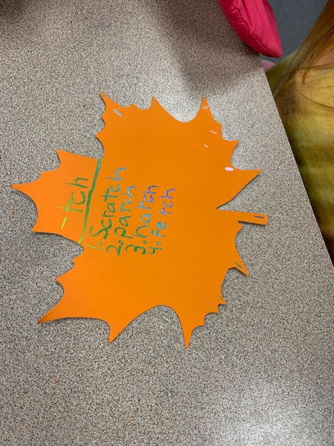 """Students are learning that """"-tch"""" by practicing their phonics words!"""