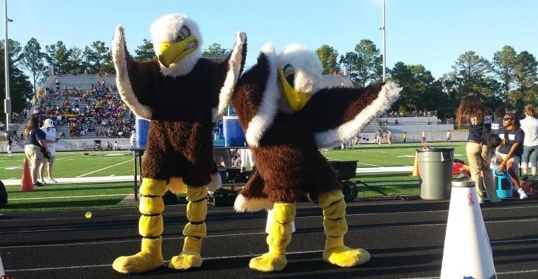 Eagle Mascots