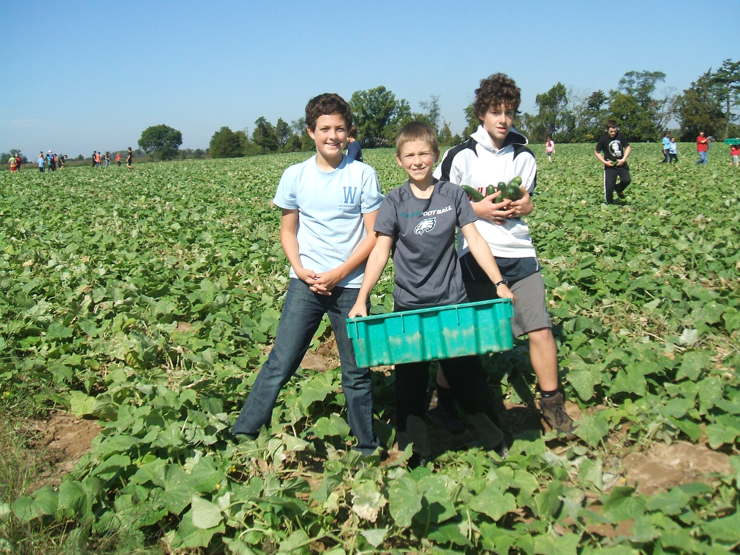 Gleaning kids1