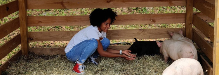 Agriculture student at TCHS working with pigs