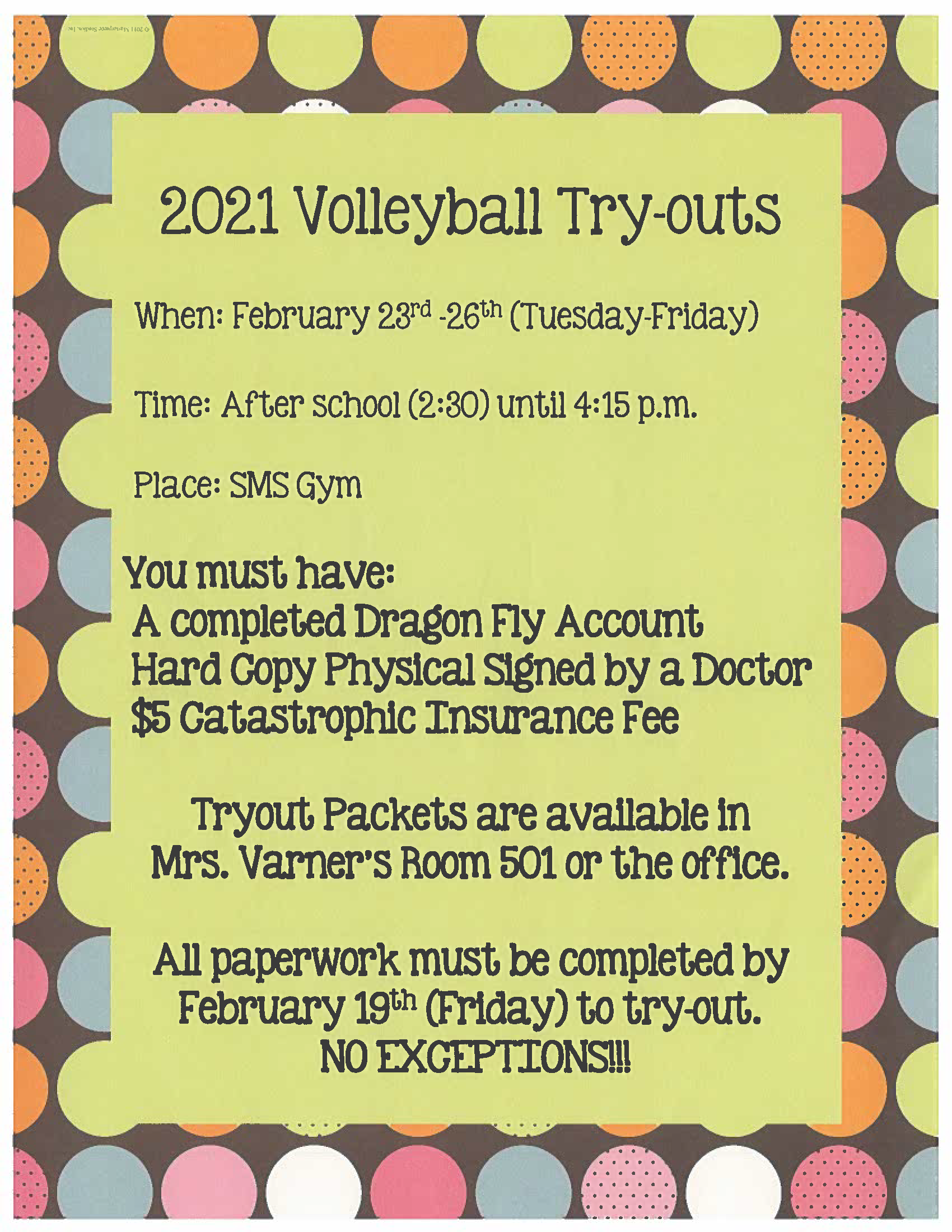 Volleyball Tryout Flyer