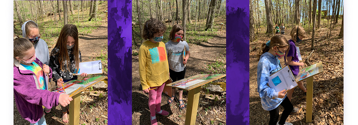 forest story book trail