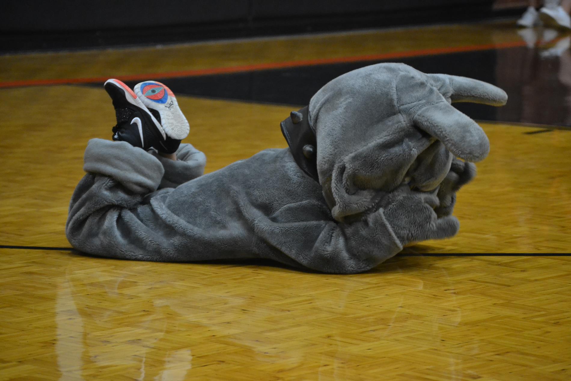 Bulls Gap Bulldog mascot