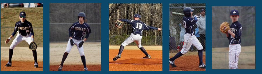 Bobcat Baseball