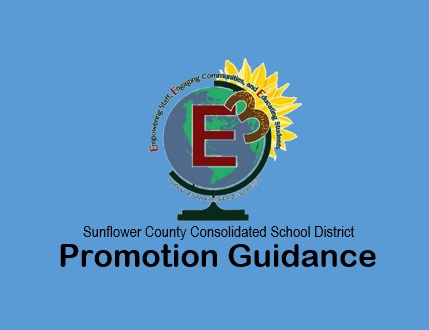 Promotion Guidance
