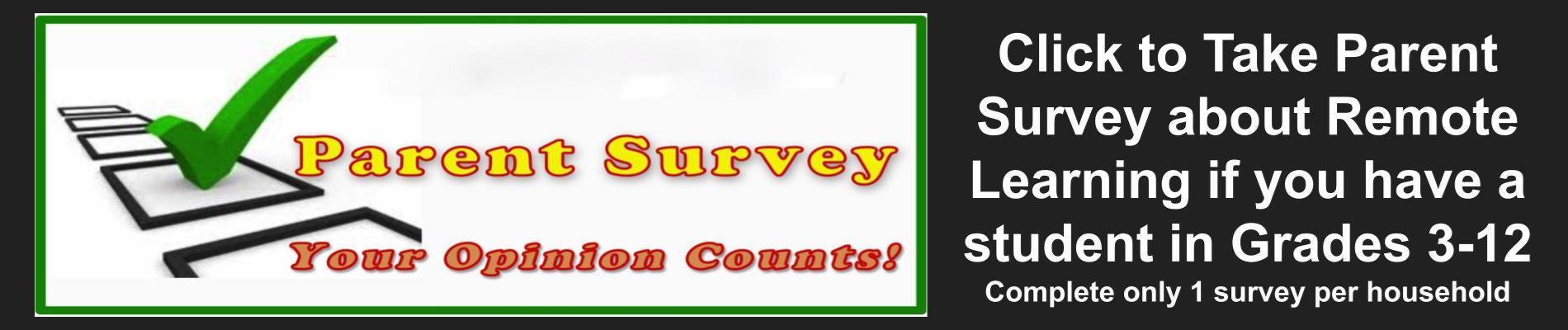 Parent Survey 3.4.2021