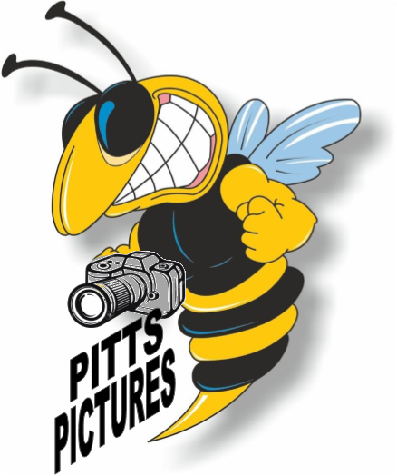 Pitts Pictures